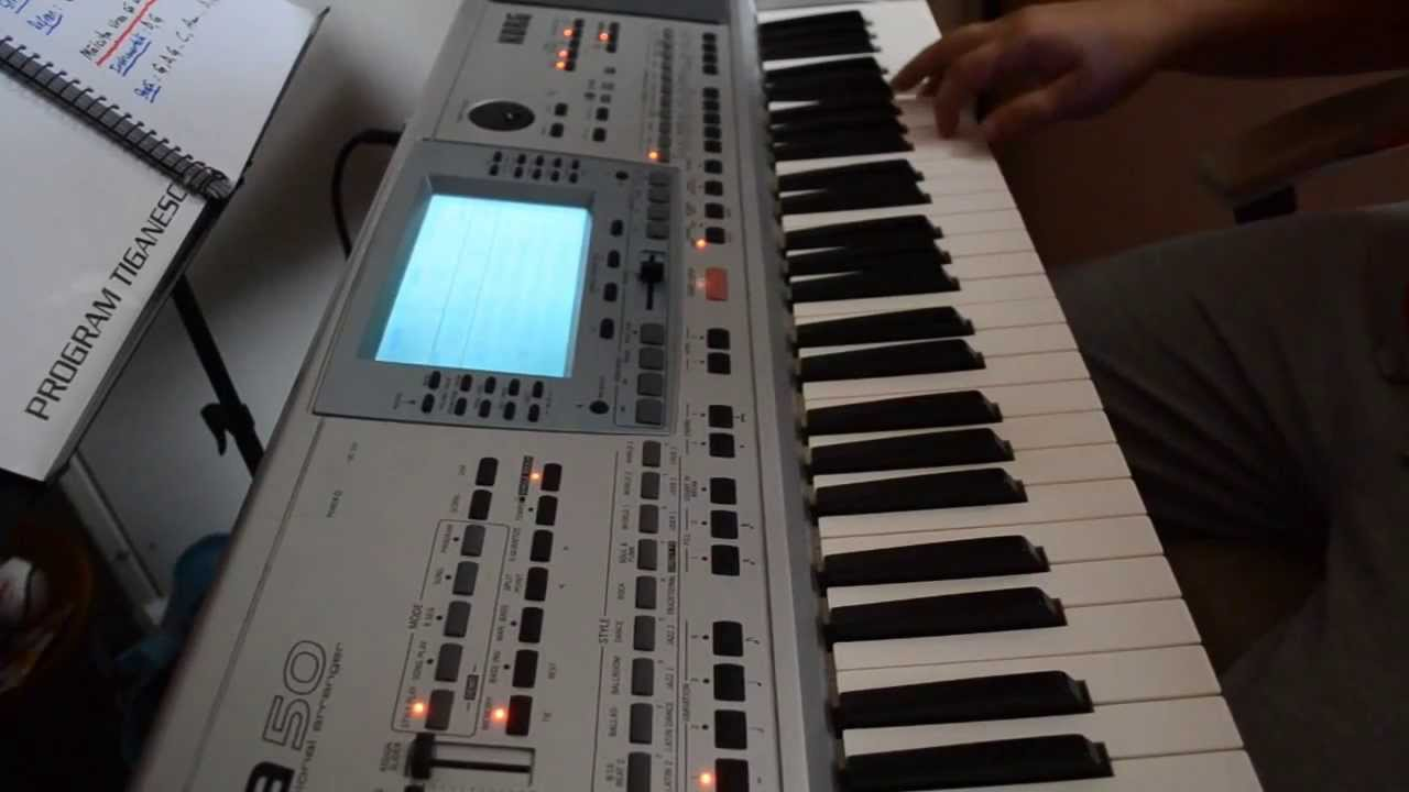Hora Muzicutelor - Korg PA 50 #1