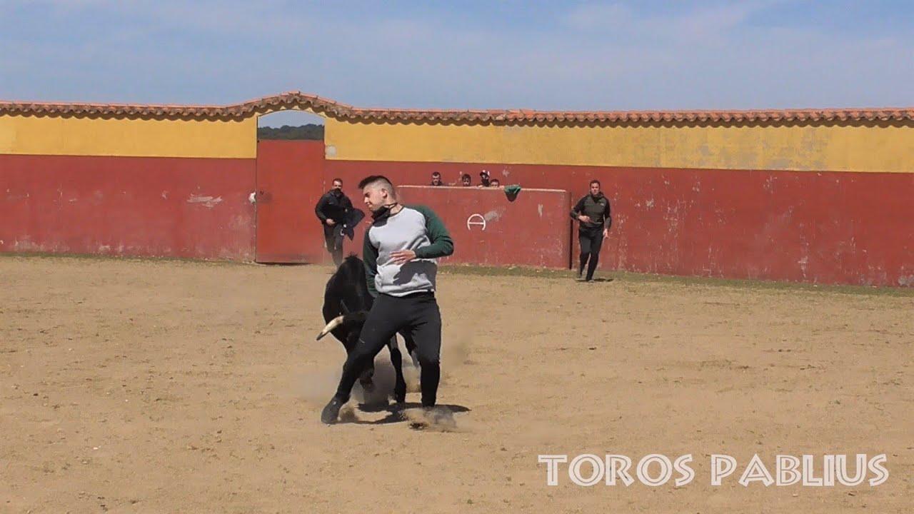 Download PASARÁ O NO?? Capea ganadería Hros Sánchez y Sánchez