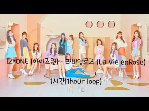 IZ*ONE (아이즈원) - 라비앙로즈 (La Vie en Rose)1시간 (1hour)