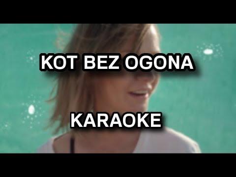 Varius Manx Kot Bez Ogona Karaokeinstrumental