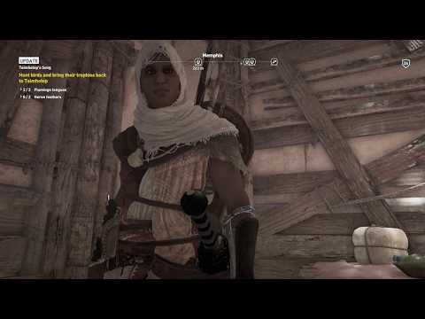 Assassin's Creed: Origins - Taimhotep's Song: Locate Fertility Talisman, Merchant, Investigate Shop