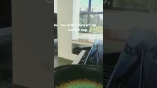 Luke Hemmings singing The Girl Who Cried Wolf (from his instagram story)