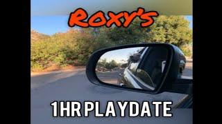 Roxy | 1 HR Playdate | Ramona
