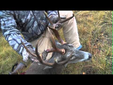 West Texas Outdoor Adventures: Central Texas Deer Hunting