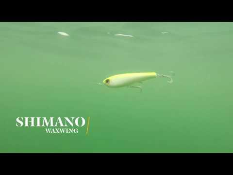 How Lures Swim: Shimano Waxwing