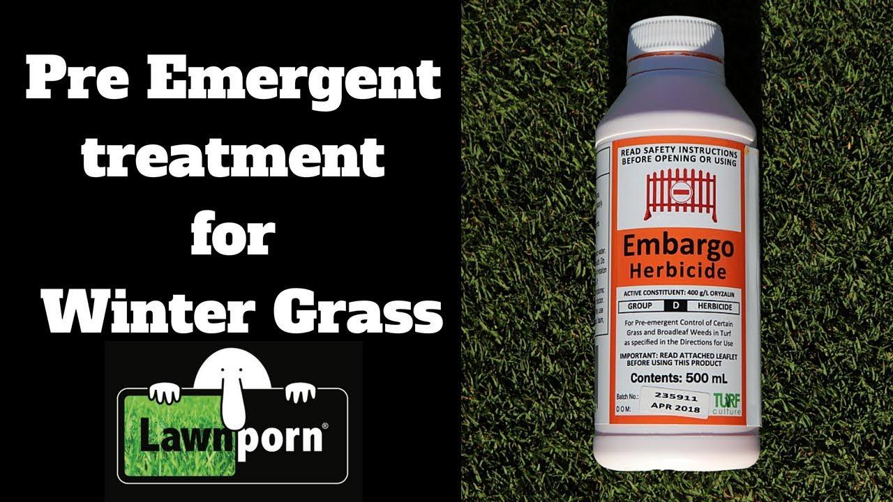 Pre Emergent Herbicide For Winter Gr