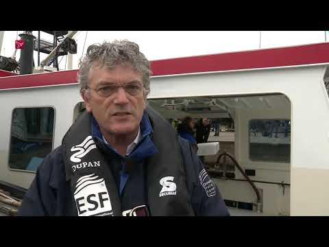 2,5 miljoen jonge palingen uitgezet in randmeren