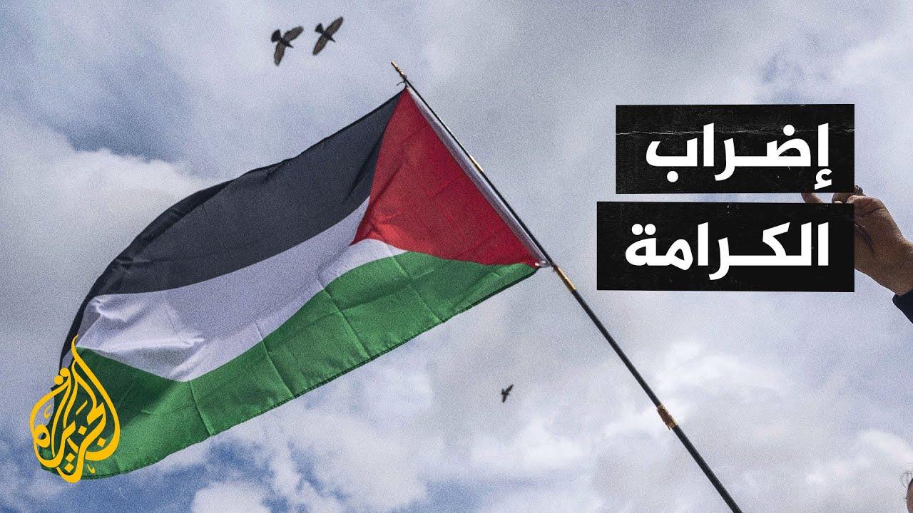 دعوات مكثفة للإضراب الشامل غدا في عموم فلسطين  - نشر قبل 18 ساعة
