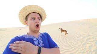 تحدي 24 ساعة في الصحراء