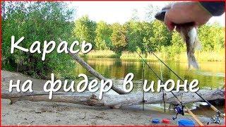 Ловля карася на фидер летом. Рыбалка на Волге в июне.