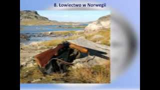 Czas Wolny 8 - Łowiectwo w Norwegii - www.norwegiaconsulting.pl