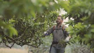 JACTO - SMALL FARM SOLUTIONS - PR40 [PUBLICIDADE]