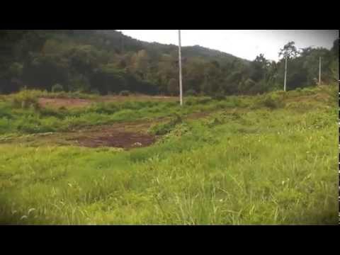 ขายที่ดินเปล่า 11 ไร่ ติดถนนทางหลวง สาย 118 กม.41 บ้านปางแฟน ต.ป่าเมี่ยง อ.ดอยสะเก็ด จ.เชียงใหม่
