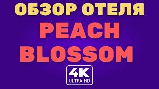 Обзор отеля Phuket Peach Blossom 4K 2021 SHA ALQ