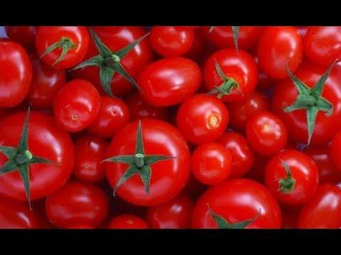 فوائد الطماطم لمرضى السكري واضرارها - YouTube