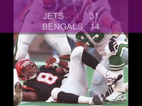 1997 bengals season in pictures