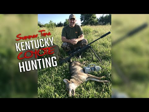 Summer Time Kentucky Coyote Hunting
