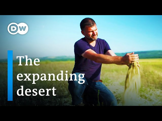Climate change in Romania   DW Documentary