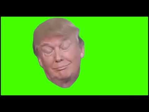 100+ Meme GreenScreen Effects! Popular Memes  No Copyright