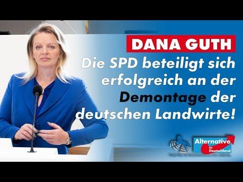 Die SPD beteiligt sich erfolgreich an der Demontage der deutschen Landwirte! Dana Guth, MdL (AfD)