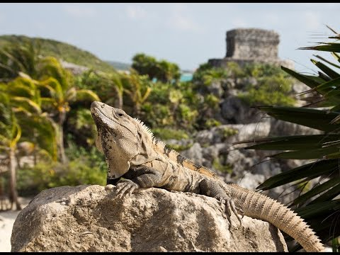 Maya route 2012 (Mexico - Guatemala - Honduras - Belize)