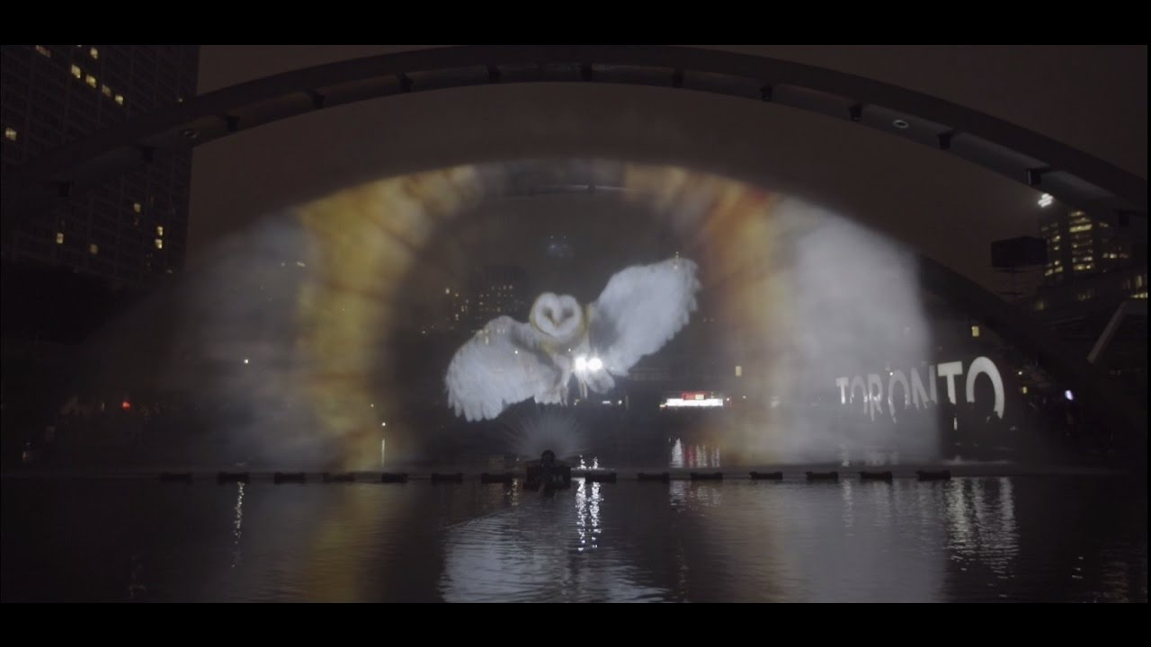 Nuit Blanche Toronto 2016 Highlights Youtube