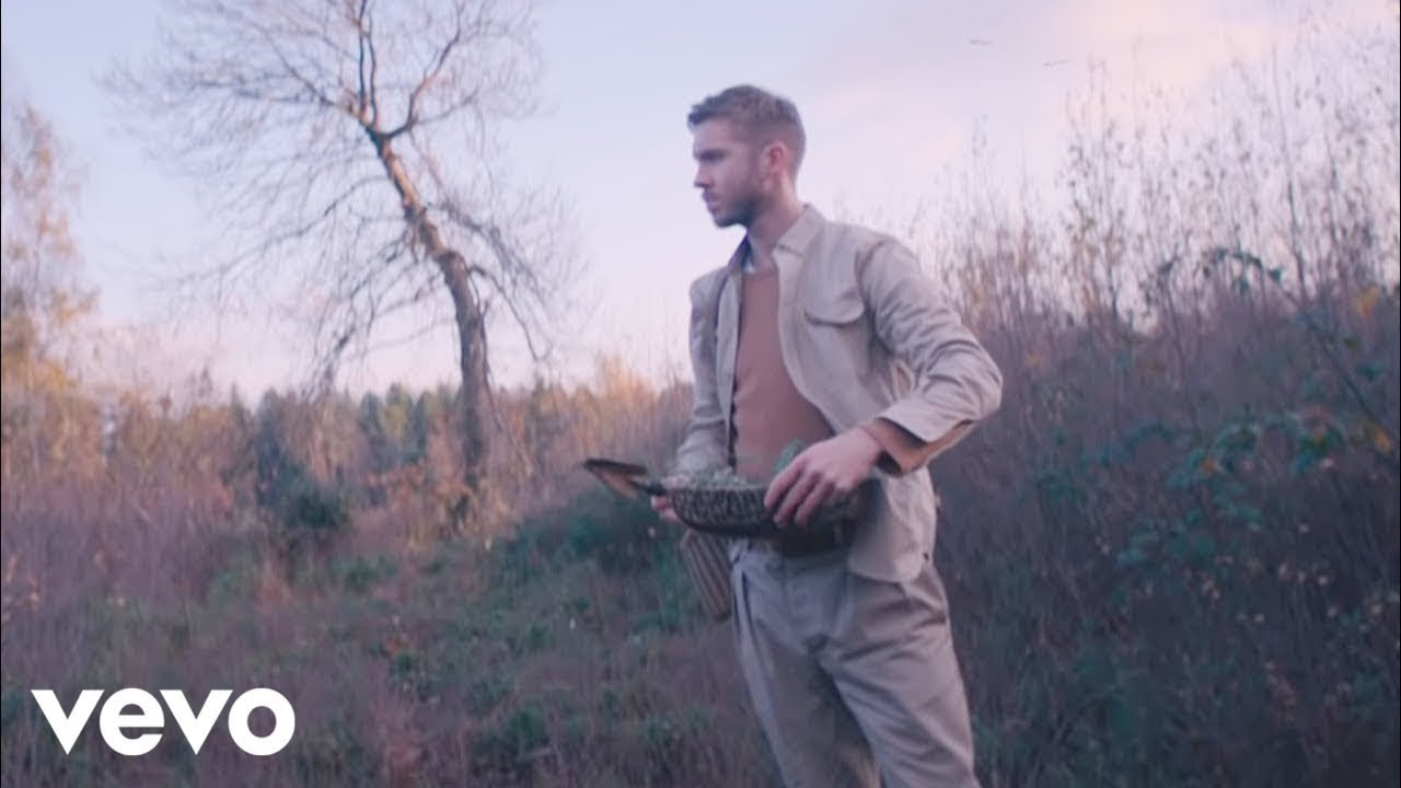 Calvin Harris, Rag'n'Bone Man - Giant (Official Video) image