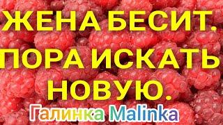 Колесниковы /Жена бесит/Пора искать Новую /Обзор Влогов /