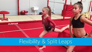 Flexibility, Strength & Split Leaps