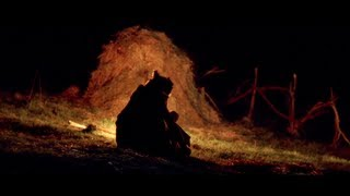 The Wolf and the Ewe - A Romanian Folktale - 35 mm Short Film