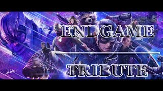 Tribute to Avengers: Endgame - In The End