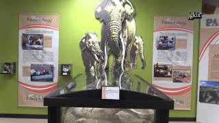 Victor Valley Museum - Discover Your Own Backyard