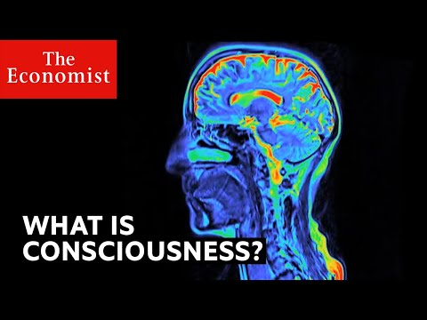 What is consciousness? | The Economist