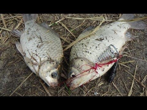 зимняя рыбалка в сибири - 2016-09-26 10:57:56