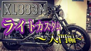【ライトカスタム】2019年式 XL883N アイアン883ご紹介!【初心者さん向け】
