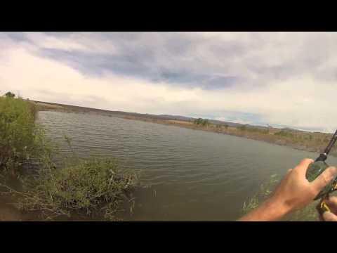 Bass Fishing At Cochiti Lake New Mexico