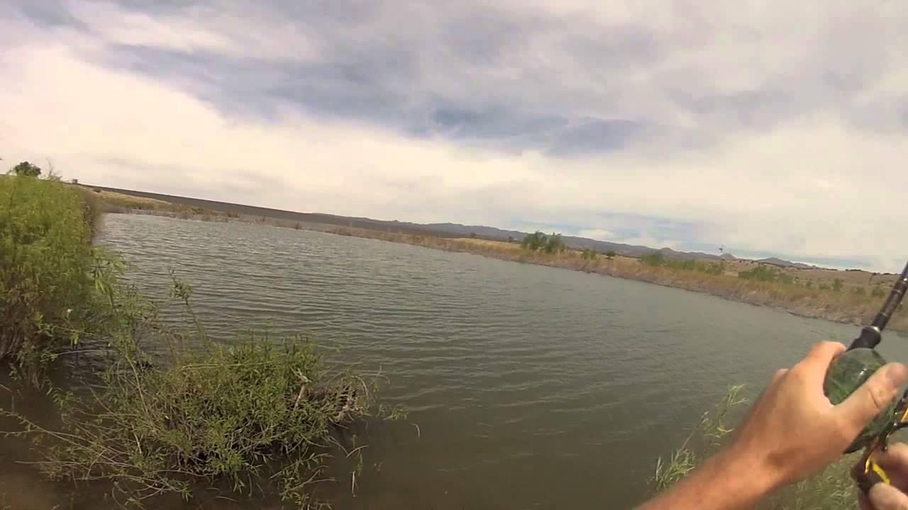 Bass fishing at cochiti lake new mexico youtube for Cochiti lake fishing