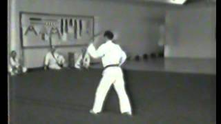 Matayoshi Tonfa Ni Odo 1981