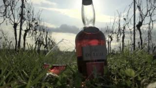 Cognac De Luze - Tasting episode n°1