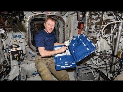 Dar alanda yaşama konusunda tecrübeli astronottan evde kalanlara tavsiyeler