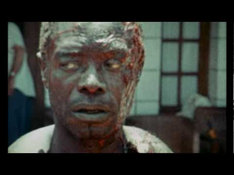 Africa: Blood and Guts trailer