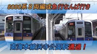 8000系8両編成急行なんば行き 南海本線浜寺公園駅通過!