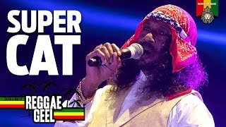 Super Cat Live at Reggae Geel 2015