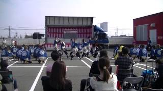 福井大学よっしゃこい2013年度演舞曲「夢光咲」 むこうへ イーザ生...