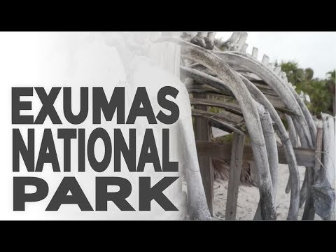 Exuma Cays Land & Sea Park one of the best places to visit in the Bahamas