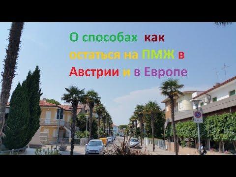 Янко Слава Yanko Slava Библиотека Fort Da