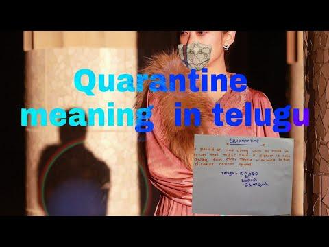 Quarantine Meaning In Telugu Must Watch Youtube