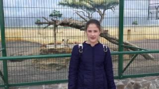 Биопарк Одесса
