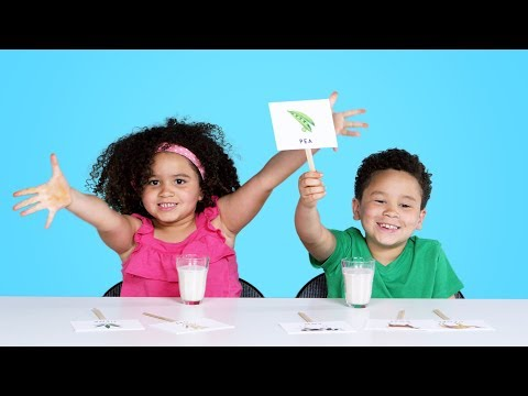 Kids Try Guess That Milk Challenge | Kids Try | HiHo Kids