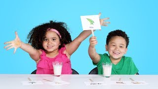 Baixar Kids Try Guess That Milk Challenge | Kids Try | HiHo Kids
